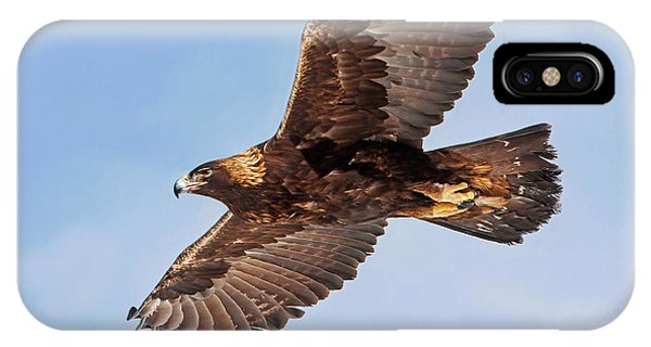Flight Of The Golden Eagle IPhone Case