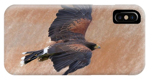 Flight Of The Harris Hawk IPhone Case