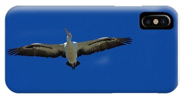 iPhone Case - Flight Of The Pelican by Blair Stuart