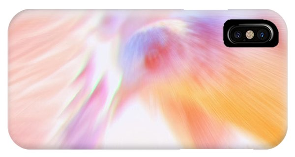 Flight Of The Seagull  IPhone Case