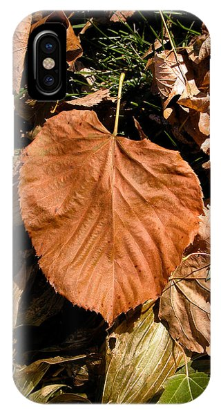 Floating Leaf IPhone Case