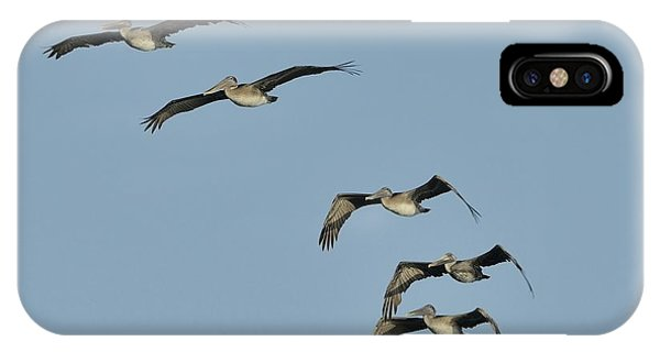 IPhone Case featuring the photograph Flock Of 5 Pelicans  by Bradford Martin