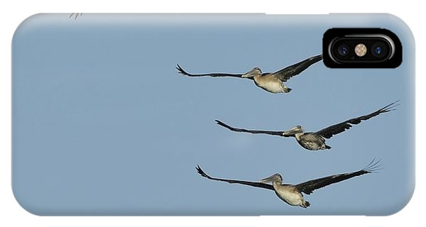 IPhone Case featuring the photograph Flock Of Brown Pelicans by Bradford Martin