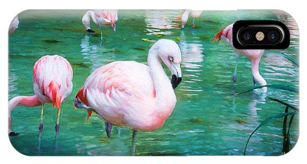 Flock Of Flamingos IPhone Case