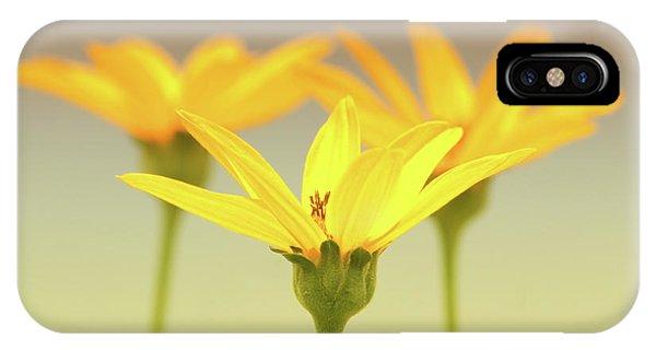 Floral Brilliance IPhone Case