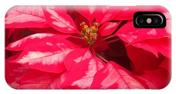 Floral Greetings IPhone Case
