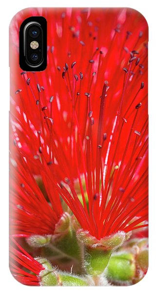 Floral Red IPhone Case