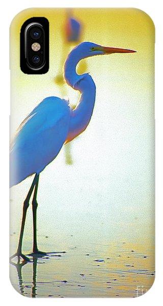 Florida Atlantic Beach Ocean Birds  IPhone Case