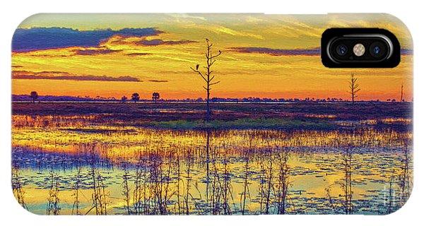 Florida Nature Paradise 2  IPhone Case