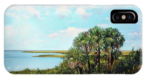 Florida Palms IPhone Case