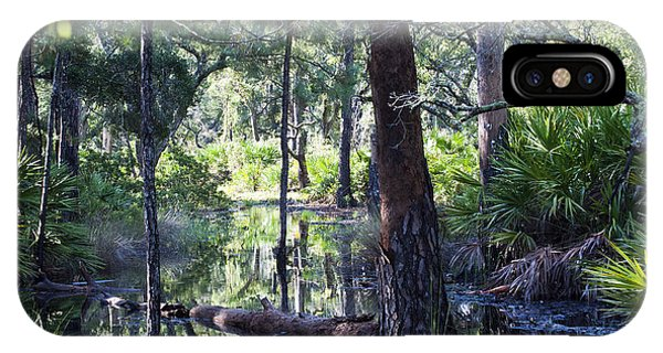 Florida Swamp IPhone Case