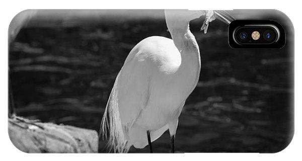 Florida White Egret IPhone Case