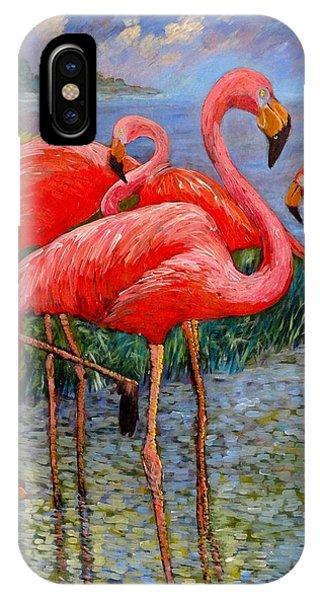 Florida's Free Flamingo's IPhone Case
