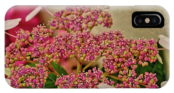 Flower 2 IPhone Case