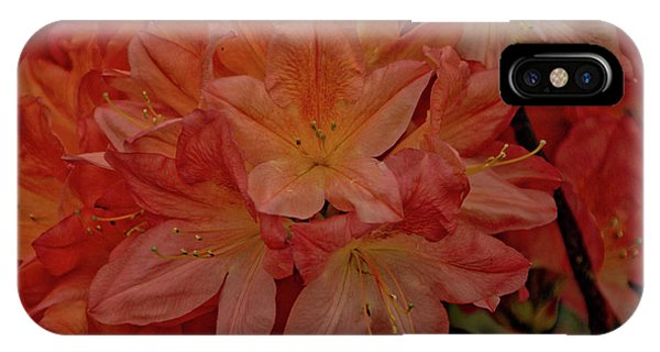 Flower 7 IPhone Case