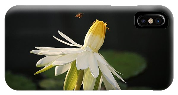 Flower And Bee In Singapore IPhone Case