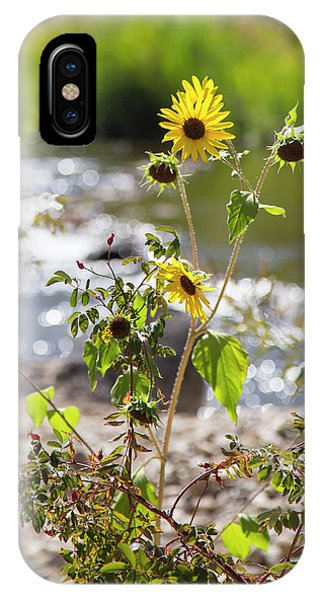 Flower By Stream IPhone Case