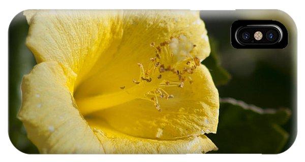 Flower Closeup IPhone Case