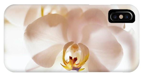 Flowers Delight- IPhone Case
