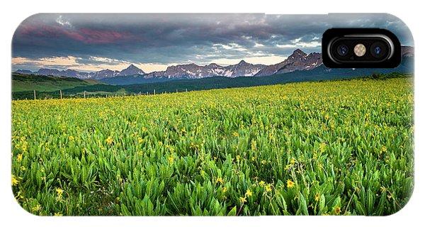 Flower Field And Sneffels Range IPhone Case