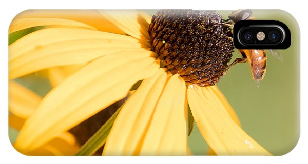 Flower Fly IPhone Case
