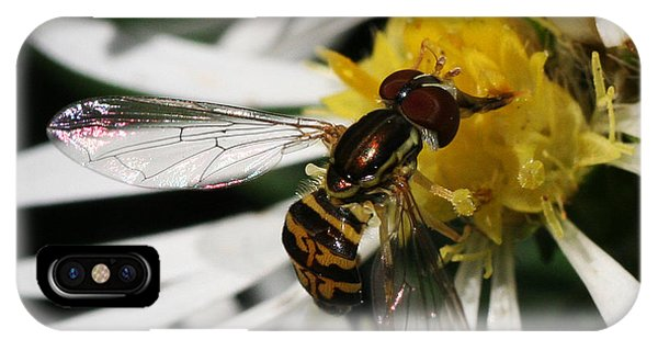 IPhone Case featuring the photograph Flower Fly On Wildflower by William Selander