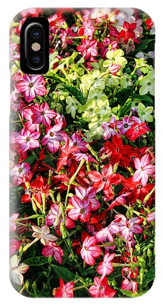 Flower Garden 1 IPhone Case