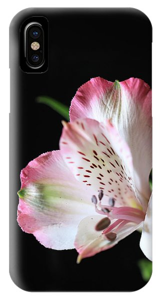 Flower IIi IPhone Case