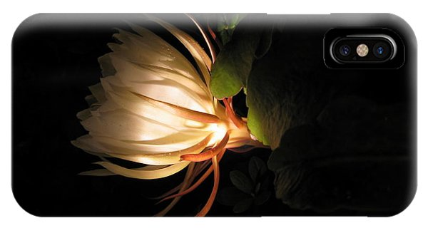 Flower Of The Night 03 IPhone Case
