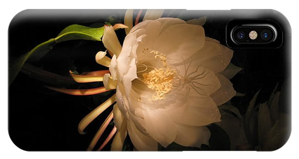Flower Of The Night 04 IPhone Case