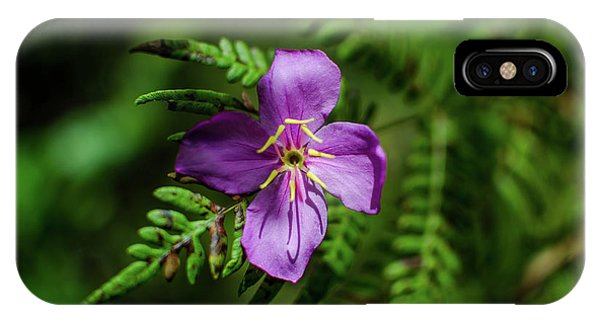 Flower On The Fern IPhone Case