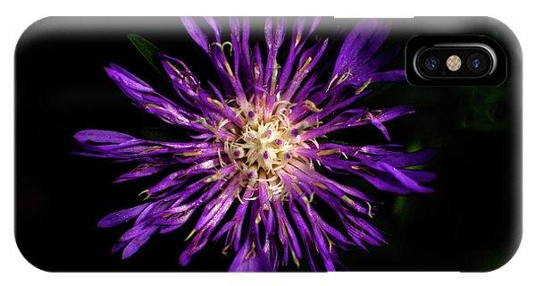 Flower Or Firework IPhone Case