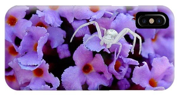 Flower Spider IPhone Case