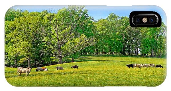 Flowering Cow Pasture IPhone Case