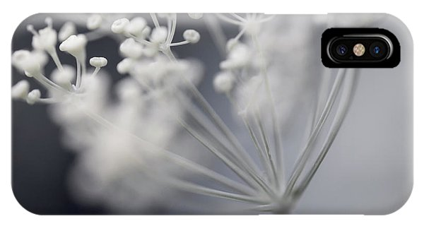 IPhone Case featuring the photograph Flowering Dill Cluster by Elena Elisseeva