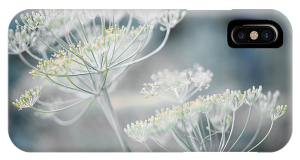 IPhone Case featuring the photograph Flowering Dill Clusters by Elena Elisseeva