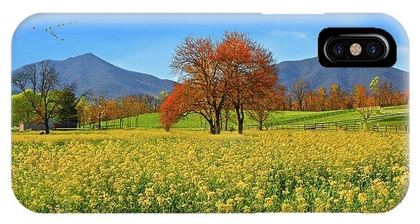 Flowering Meadow, Peaks Of Otter,  Virginia. IPhone Case