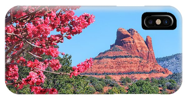 Flowering Tree - Sedona Red Rock IPhone Case