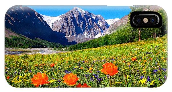 Flowering Valley. Mountain Karatash IPhone Case