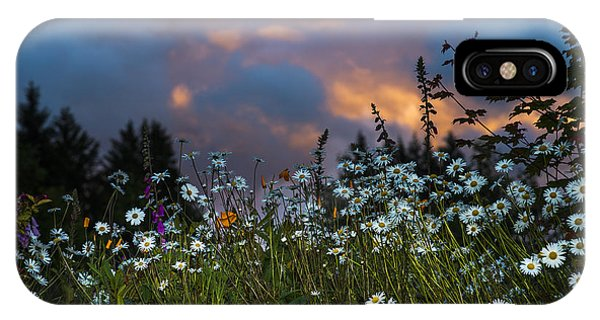 Flowers At Sunset IPhone Case