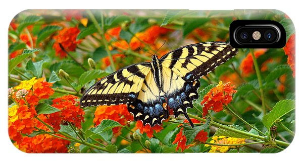 Flowers For Butterflies IPhone Case