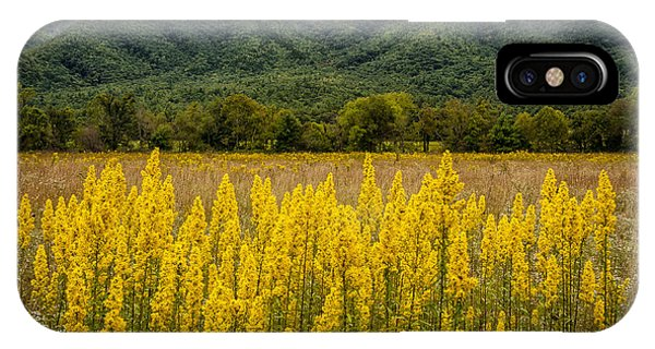 Flowers In Cades Cove IPhone Case