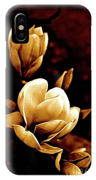 Flowers In Sepia  IPhone Case