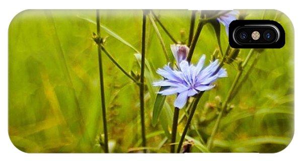 Green iPhone Case - #flowers #lensbaby #composerpro by Mandy Tabatt