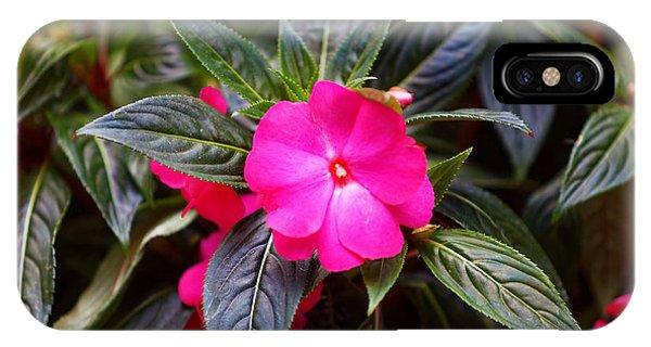 Flowers Of Battery Park II Phone Case by M Nuri Shakoor