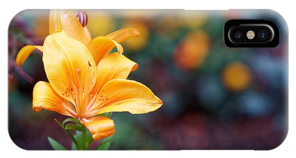 Flowers Of Central Park IIi Phone Case by M Nuri Shakoor