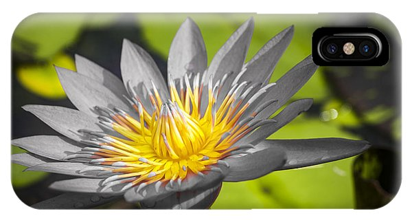 Flowers Of Grey IPhone Case