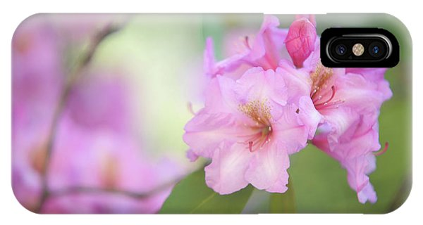 Buy Art Online iPhone Case - Flowers Of Pink Rhododendron by Jenny Rainbow