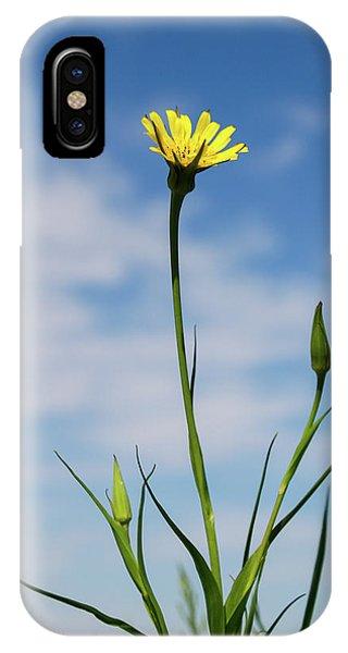 Flp-2 IPhone Case