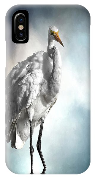 Fluffed And Plumped IPhone Case